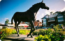 Liverpool Hen Party idea: Horse Racing at Aintree