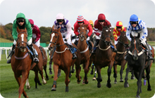 Newcastle Racecourse: hen night idea